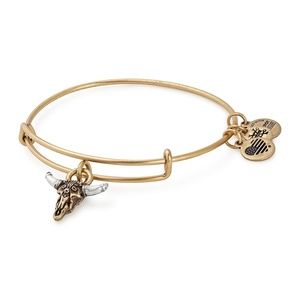 Alex and Ani Spirited Skull Charm Wire Bracelet
